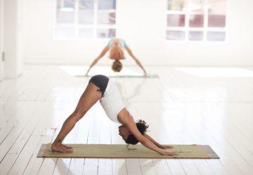 gazette, bio, nature, bien-être, bien etre, yoga, respiration, relaxation méditation, posture, asana, bikram, bikram yoga, hatha, bhakti, fly yoga, acroyoga, yoga partners, hatha flow, ashtanga, hatha, raja