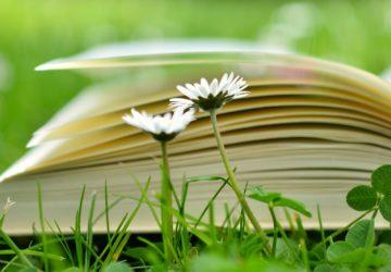 gazette, bio, lecture, livre, roman, essai, édition, nature, bien-être, bien etre, avis, recension, boostagram, booktubeur, guide bien-être