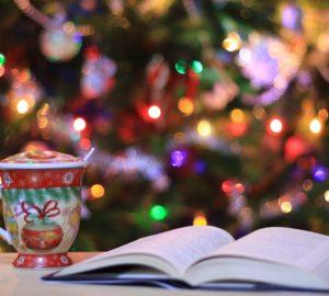avis, bien etre, bio, bookstagram, booktubeur, gazette, hygge, lecture, livre, nature, recension, roman, Noël, livre de Noël, lecture de Noël, roman de Noël